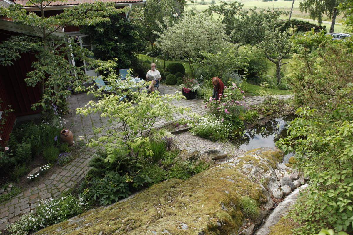 Trädgård med berg och utsikt