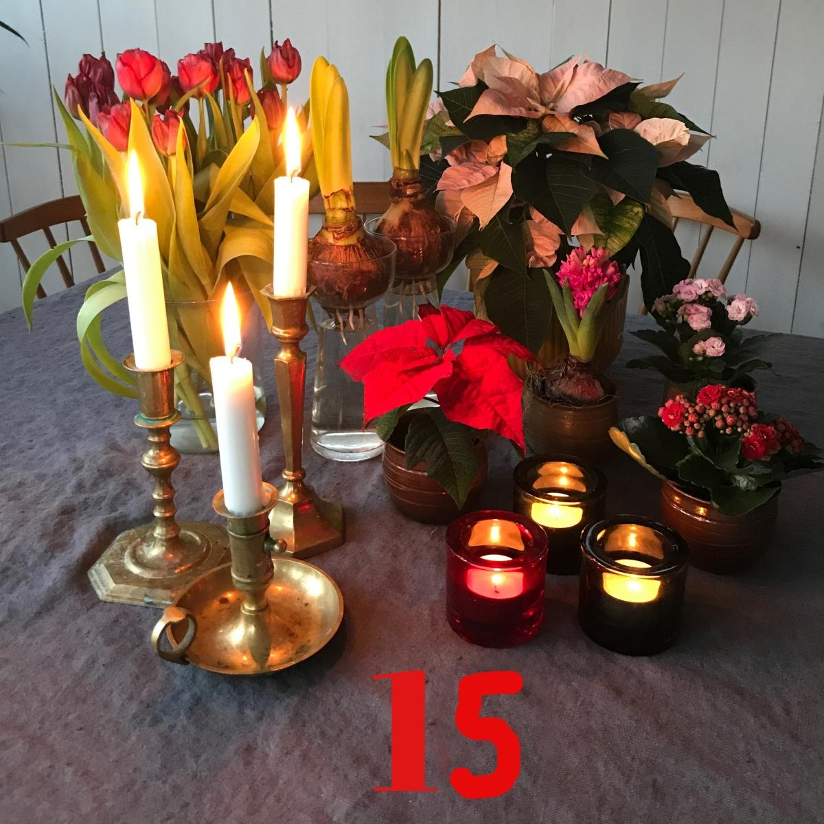 Ljuskalender 15